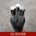 絕緣電力電纜 高低壓電力電纜 電纜生產廠家