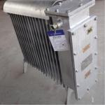 RB-2000/127煤礦用增安型暖氣電熱取暖器