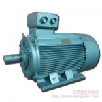 Y、Y2、Y3系列小电动机 成都总代理