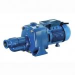 意大利宾泰克CAB系列自吸泵 四川进口水泵厂家