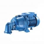 宾泰克AP系列自吸泵 成都进口水泵型号