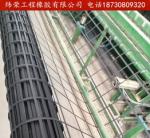 钢塑 玻纤 单向 双向 塑料土工格栅 护坡 路基工程专用