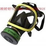 厂家直销全面罩,全面具,防毒面具,防毒面罩
