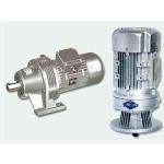 WBE1285-WD-187-200W微型摆线减速机