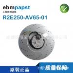 德国ebmpapst变频器风机R2E250-AV65-01