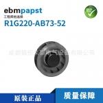 德國ebmpapst特價銷售原裝R1G220-AB73-52
