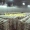 合肥冷库建造肉类冷冻库低价安装设计