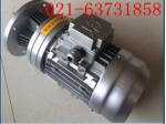 WB100摆线针轮减速机 现货/立式安装单级减速