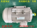 B35節能Y2-132M-4 7.5kw純純銅線國標電機價格