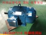Y132S-4电机参数,5.5kw新型节能三相异步电动机批发