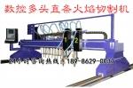 龙门式数控多头直条火焰切割机价格_生产厂家