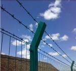 带刺绳护栏网