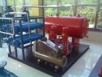 供應氣體頂壓消防給水設備/廠家/優勢/圖片/作用